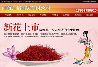 西藏九诺商贸有限公司13908904608.jqw.co