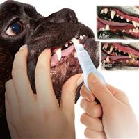 新型宠物用品狗用洁牙擦牙齿清洁护理宠物洁牙擦