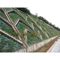 荆门县道边坡绿化-鄂州县道边坡绿化-孝感县道边坡绿化