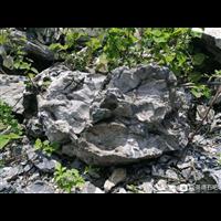 英石产地批发园林假山工程造景大英石