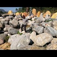 吨位泰山石驳岸景观石英德泰山石批发雪浪石切片纹理清晰