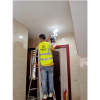 南安水头白蚁防治 水头白蚁防治哪家强