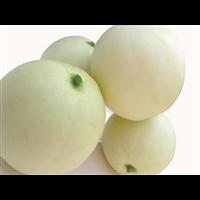 江西甜瓜市场批发价格_江西甜瓜专业代收企业