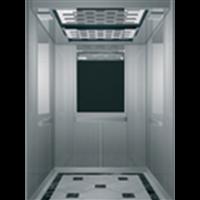 别墅电梯250-400公斤