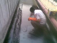 茂名�F皮房防水