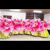 南昌演出服装✫南昌舞蹈服装