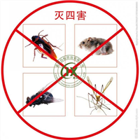 装修灭白蚁 -泉港白蚁防治