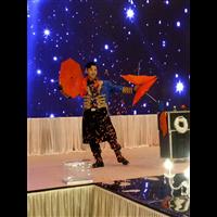 广州魔术师 专业舞台魔术 晚会魔术表演
