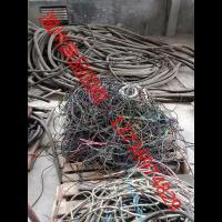 温州废电缆回收