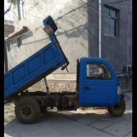 孟津送庄庄镇东风运输队三轮车20辆常年接各种工程车多效率高