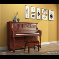 信阳中心钢琴培育公司