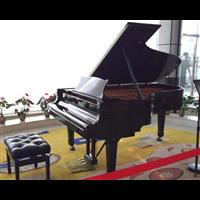 信阳琴行乐器培训学习钢琴中的练习问题