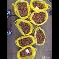 绵阳回收虫草电话;15861187903