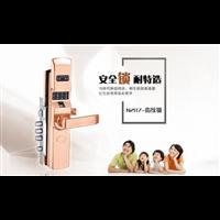 N287指纹防盗锁-襄阳耐特指纹锁