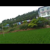 鑫鑫纸品新万博足球厂6