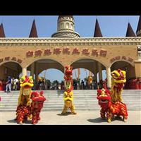 广西第一支优秀醒狮团-梅花桩舞狮表演