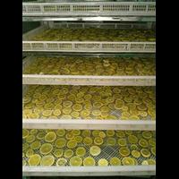 四川檸檬加工步驟及檸檬烘干機干燥經驗