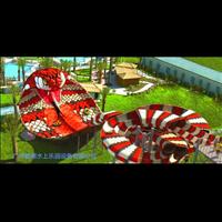 水上乐园设备眼镜蛇滑梯