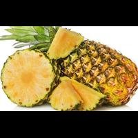 长春菠萝生产基地