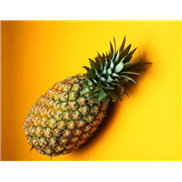 吉林菠萝代办怎么样