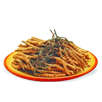 海珠大量回收冬虫夏草虫草回收价格分类