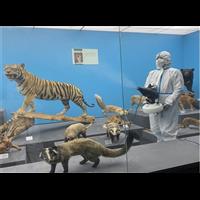 武汉武昌区 空压机冷却器清洗