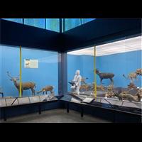 襄阳樊城区工厂通风管道除尘消毒