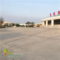 砾石聚合物地坪厂家l上海亚睿生产厂家供应