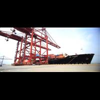 中国出口海运到美西仓库就找保时运通
