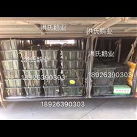 阳江海陵大白沙鹅苗供应商