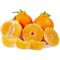都匀市纽荷尔脐橙供应商地址