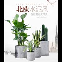 武汉绿植租摆,武汉鲜花出租,武汉园林绿化养护
