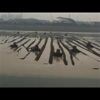 【湖北水陆两用挖机租赁】哪里的价格便宜?