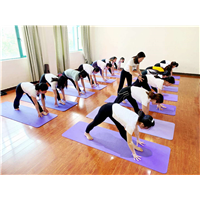 艾扬格瑜伽教练培训