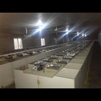 湖南竹鼠养殖技术-湖南竹大量供应-湖南优质竹鼠批发