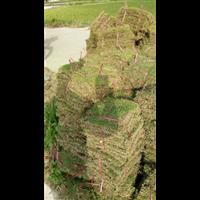 台湾草坪除草剂那种好&优质草坪专用除草剂