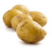 迷你小土豆厂家