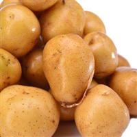 哪里有黄皮黄心小土豆
