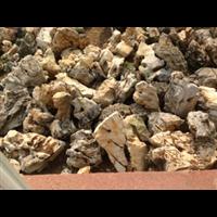 上海太湖石批發