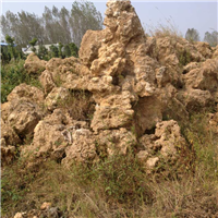 江蘇吸水石假山制作公司