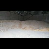 唐山小麦收购|滦南县高学艳粮食收购处
