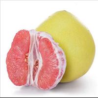 海南红心柚子批发