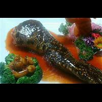 鳄鱼养殖-鳄鱼肉有哪些功效