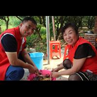 深圳农家乐哪里好玩?