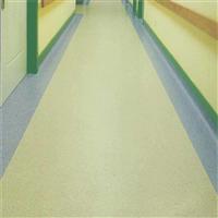 东莞石龙PVC防尘卷材地板/PVC耐磨卷材-东莞市百特净化科技