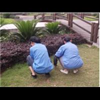 宜昌市最好的保潔公司