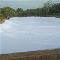 桂林土工膜