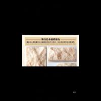 天然蘑菇石