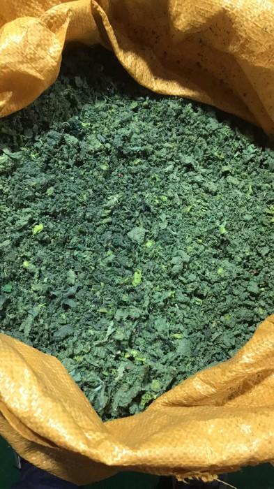 晋江市绿色氨纶泡泡料哪家公司质量好
