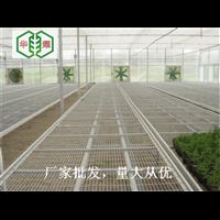 南京温室苗床网直接供应厂家华耀农业